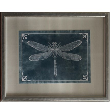 Cuadro vintage Dragon-fly 2 en Betty&Co.